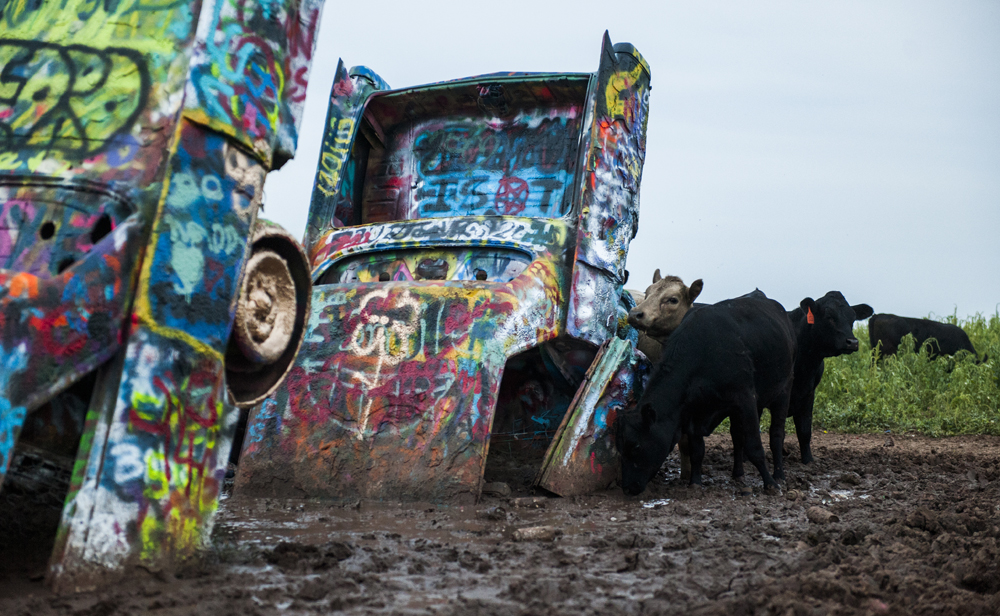 Cadillac Ranch, Amarillo, TXPhoto copyright Ashley Landis
